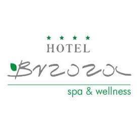 logo hotelu Brzoza